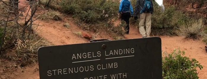 Angels Landing Trail is one of Orte, die Krzysztof gefallen.