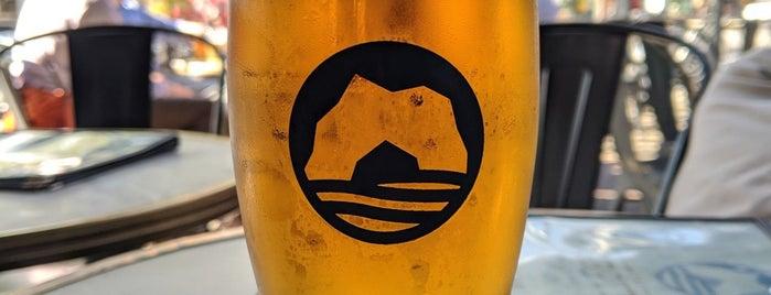 The Beer Grotto-Ann Arbor is one of Posti che sono piaciuti a Dustin.