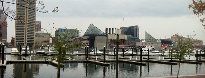 Inner Harbor is one of DC - Must Visit.