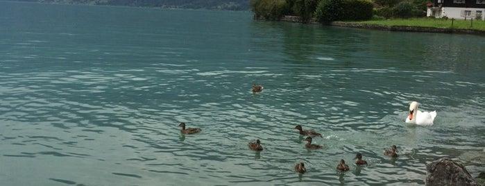 Brienz is one of Swiss trip.
