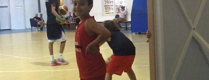 Antalya OSMANLI Basketbol Spor Salonu is one of Posti che sono piaciuti a 🌜🌟hakan🌟🌛.