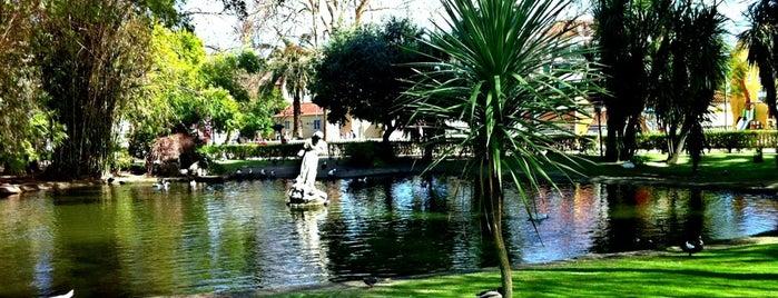 Jardim da Estrela is one of สถานที่ที่บันทึกไว้ของ Tillmann.