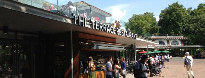 The Terrace Restaurant is one of Nicole'nin Beğendiği Mekanlar.