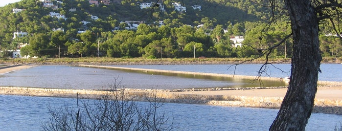 Parc De Ses Salines is one of Ibiza to doby Jas.