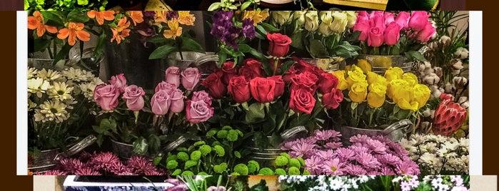 L'amour des Fleurs is one of Tempat yang Disukai 83.