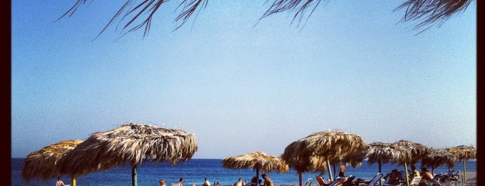Mojito Beach Bar and Rooms is one of Rhodes island potpourri.