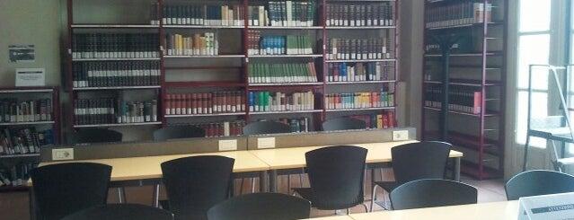 Biblioteca di Scienze del Linguaggio is one of Torino.