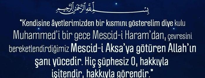 GEZER-Antalya-Fabrika Satış Mağaza is one of Alp Gökçeさんのお気に入りスポット.