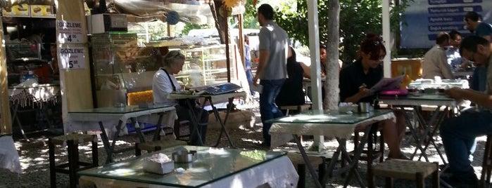 Yeşil Bahçe is one of The places I love in Türkiye.