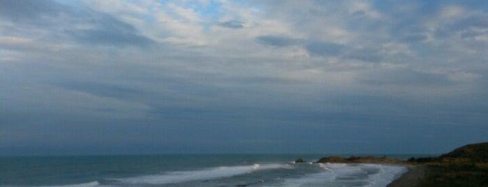Palma Sola is one of Lugares favoritos de @im_ross.