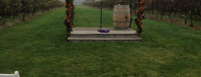 Saltwater Farm Vineyard is one of Lugares favoritos de Alex.