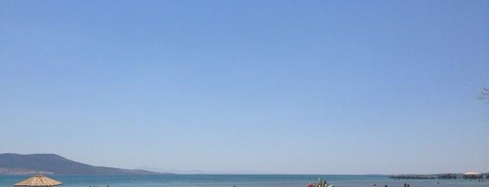 Obata mariyasko beach(aurum holiday arası:) is one of Posti che sono piaciuti a Çağlar.
