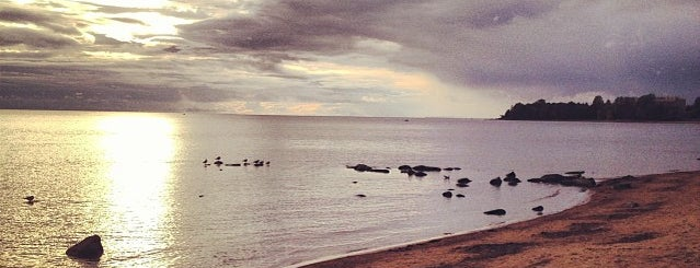 Пляж «Берег вблизи Пенат» is one of Сестрорецк и побережье Финского залива.