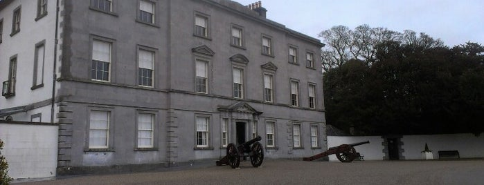 Battle of The Boyne Visitor Centre is one of To-visit in Ireland.
