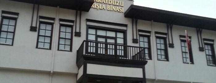 Saraydüzü Kışla Binası Milli Mücadele Müzesi is one of Amasra-Sinop-Amasya.