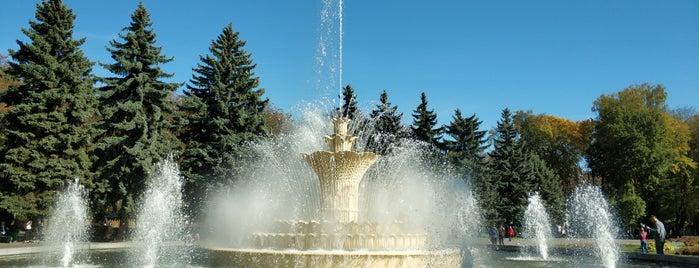 Фонтан в центральному міському парку Вінниці is one of Illia : понравившиеся места.