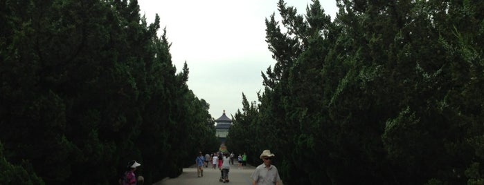 Temple of Heaven is one of Check-ins to do again before dying.