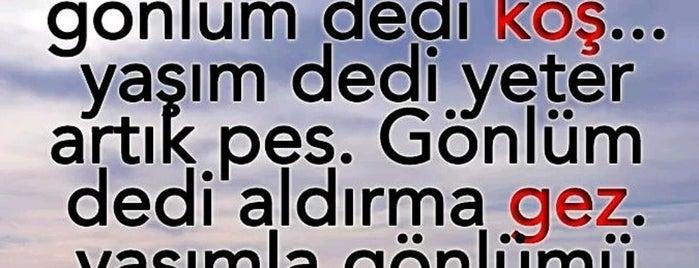 Humusçu Nedim Usta'nın Yeri is one of Locais salvos de Aydın.