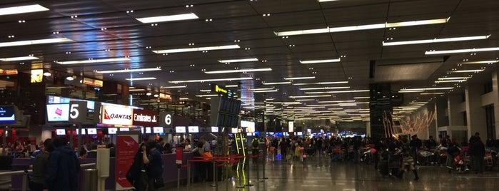 Aeroporto de Singapura Changi (SIN) is one of Airport.