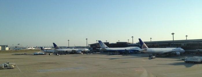 Aeroporto Internacional de Narita (NRT) is one of Airport.
