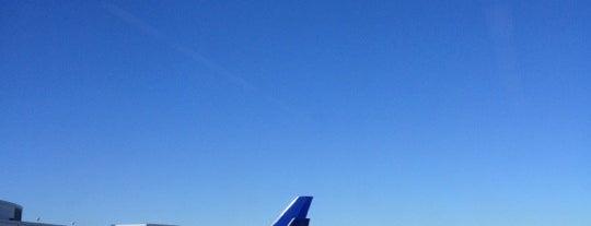 Aeroporto Internacional de São Francisco (SFO) is one of Airport.