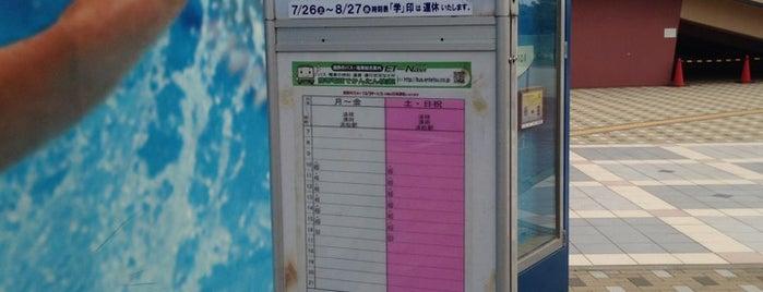 浜松市総合水泳場バス停 is one of 遠鉄バス 16-4|小沢渡線.