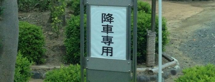 浜松北高臨時降車場 (姫街道) is one of 遠鉄バス  51|泉高丘線.