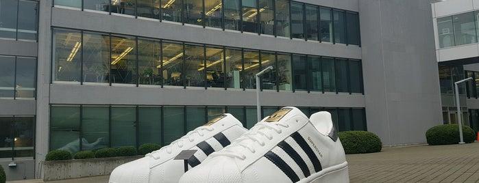 Adidas Employee Store is one of Portlandia.