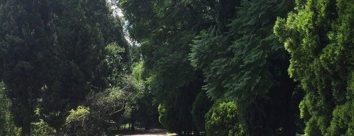 trotapista chapultepec is one of Orte, die Alfonso gefallen.