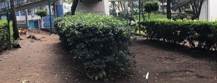 Dog Track Parque Mariscal Sucre is one of Locais curtidos por Karla.