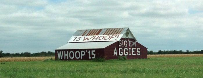 Gig 'Em Aggies Barn is one of Lieux qui ont plu à Rita.