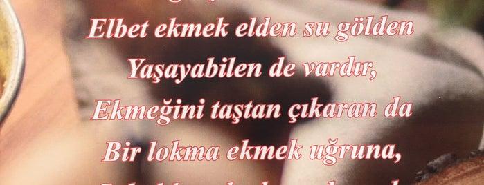 Bambino Fırın Concept is one of Selçuk'un Beğendiği Mekanlar.