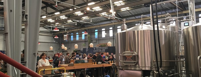 Barebottle Brewing Company is one of Best Things To See & Do.