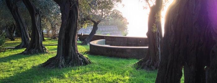 Villa Fondi is one of #invasionidigitali 2013.