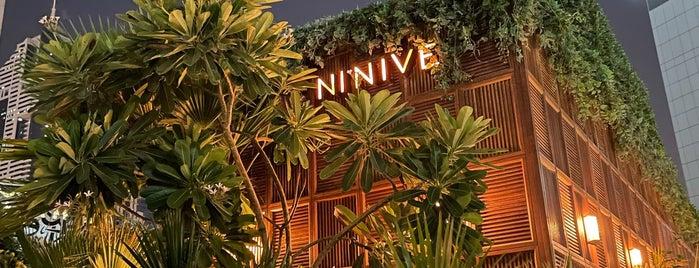 Ninive is one of Karl in Dubai 🐪.