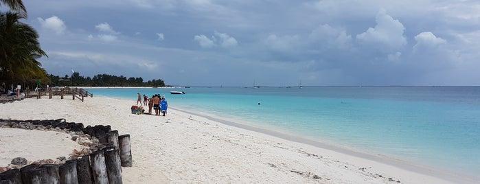 Diamond La Gemma Dell'est Beach is one of ZNZBR.