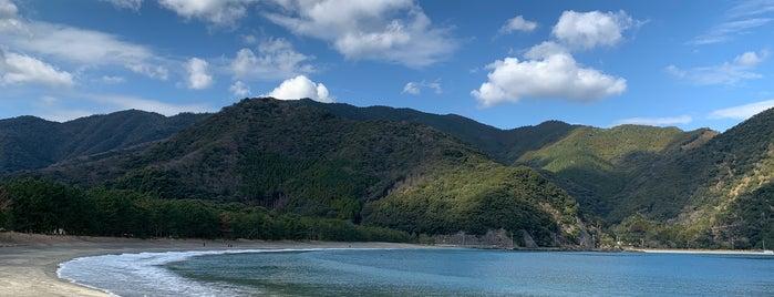 波当津海岸 is one of 日本の白砂青松100選.