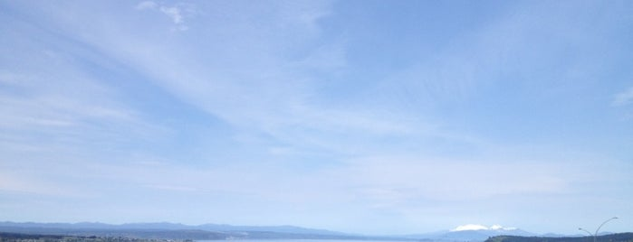 Taupo Lookout is one of NZ.
