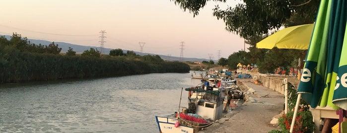Kavakkoy Gozde Balikcisi is one of Posti che sono piaciuti a Bora.