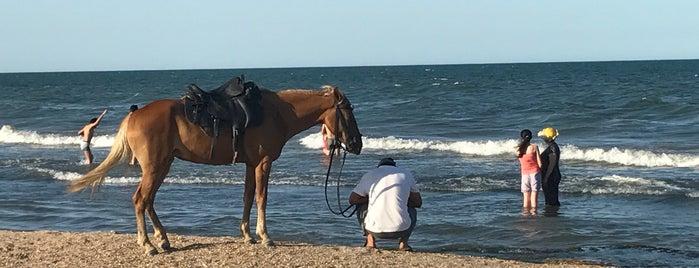 Дербентский пляж is one of Anna 님이 좋아한 장소.
