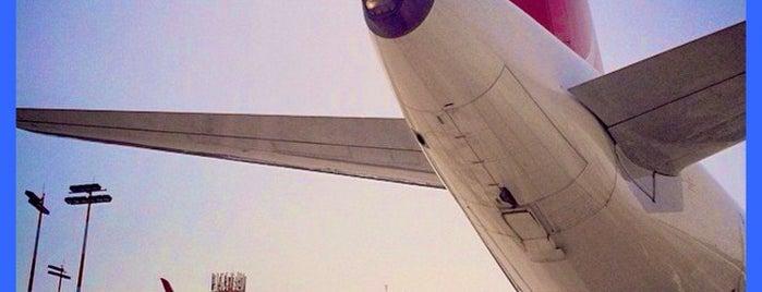 Ben Gurion Uluslararası Havalimanı (TLV) is one of ˙·•● עלי👁 ●•·˙'ın Beğendiği Mekanlar.