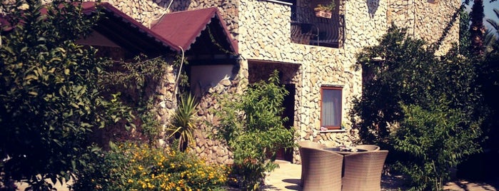 Hotel Villa Monte is one of hotels 2.