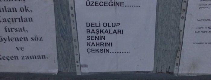 Beyoğlu 20. Noterliği is one of Locais curtidos por Selin.