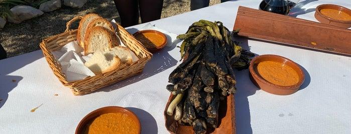 Tarragona bons