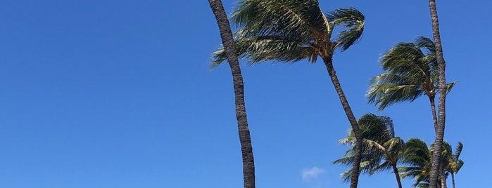 Ko Olina Beach is one of Oahu.