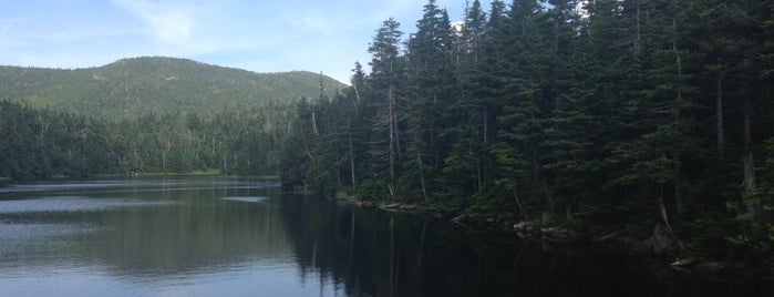 Smugglers Notch State Park is one of VT.