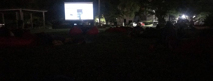 Movie + Picnic is one of En Vallarta.
