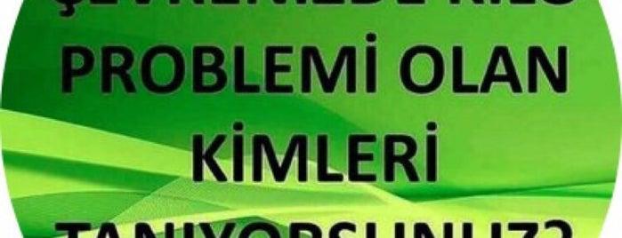 Gün Sazak Bulvari Çamlik Yürüyüs Alanı is one of Lugares favoritos de HAKAN.
