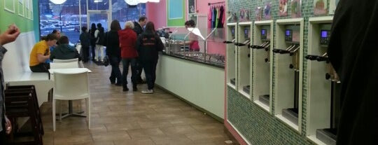 sweetFrog is one of NYC.