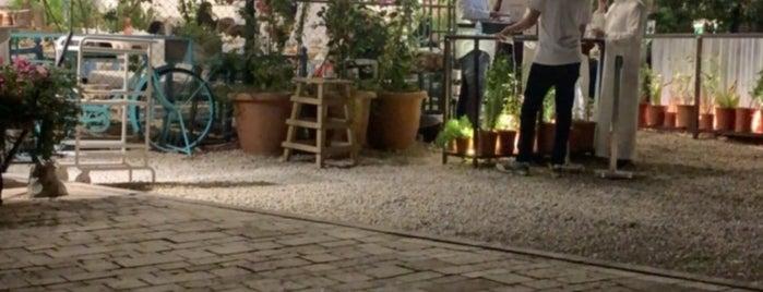 Element Specialty Coffee / Diriyah Springs is one of Queen: сохраненные места.